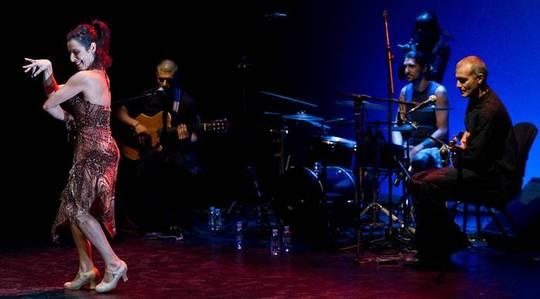 una imagen de una escena con una bailaora cantaora en plena actuación y el trío de músicos tras ella