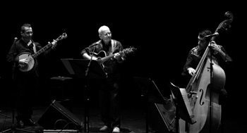 Wet and Wild String Band. Teatro Echegaray.