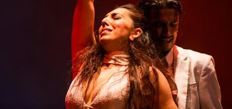 foto de un momento del cuadro flamenco de baile