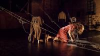 37 Festival de Teatro, Teatro Cervantes, Teatro Echegaray, La voz dormida, Compañía Salvador Collado,